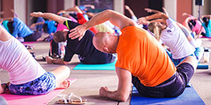 Human Business - Yoga